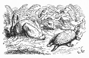 Hare and Tortoise