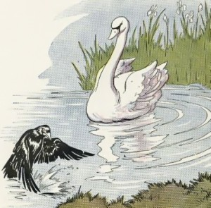 Raven and Swan