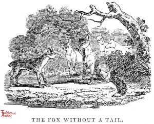 Whittingham - Fox Without a Tail
