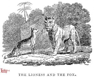 Whittingham- Lioness and Fox