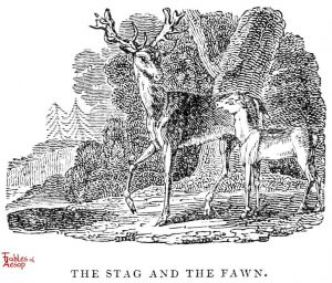 Whittingham - Stag and Fawn