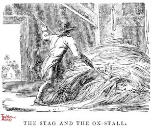 Whittingham - Stag in Ox Stall