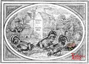 Bewick-0099-Partridge-and-Cocks