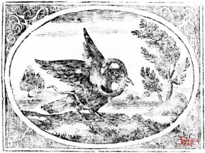 Croxall - Raven and Serpent