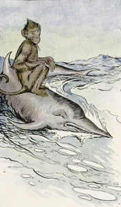 Monkey and Dolphin