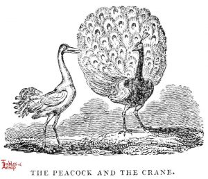 Whittingham - Peacock and Crane