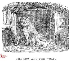 Whittingham - Sow and Wolf