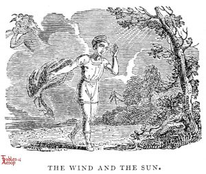 Whittingham - Wind and Sun