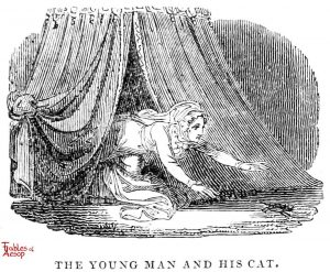Whittingham - Young Man and Cat