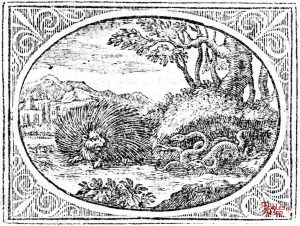 Croxall - Porcupine and Snakes