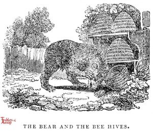 Whittingham - Bear and Beehive