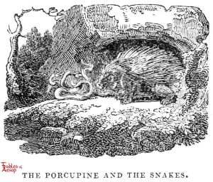 Whittingham - Porcupine and Snake