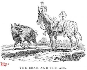 Whittingham - Boar and Ass