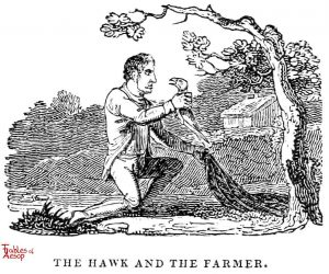Whittingham - Hawk and Farmer