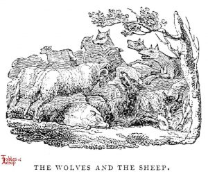 Whittingham - Wolves and Sheep