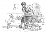 Coppersmith Puppy C2