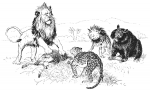 Lion and Beasts C2