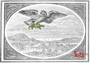 Bewick - 0293 - Tortoise and Eagle