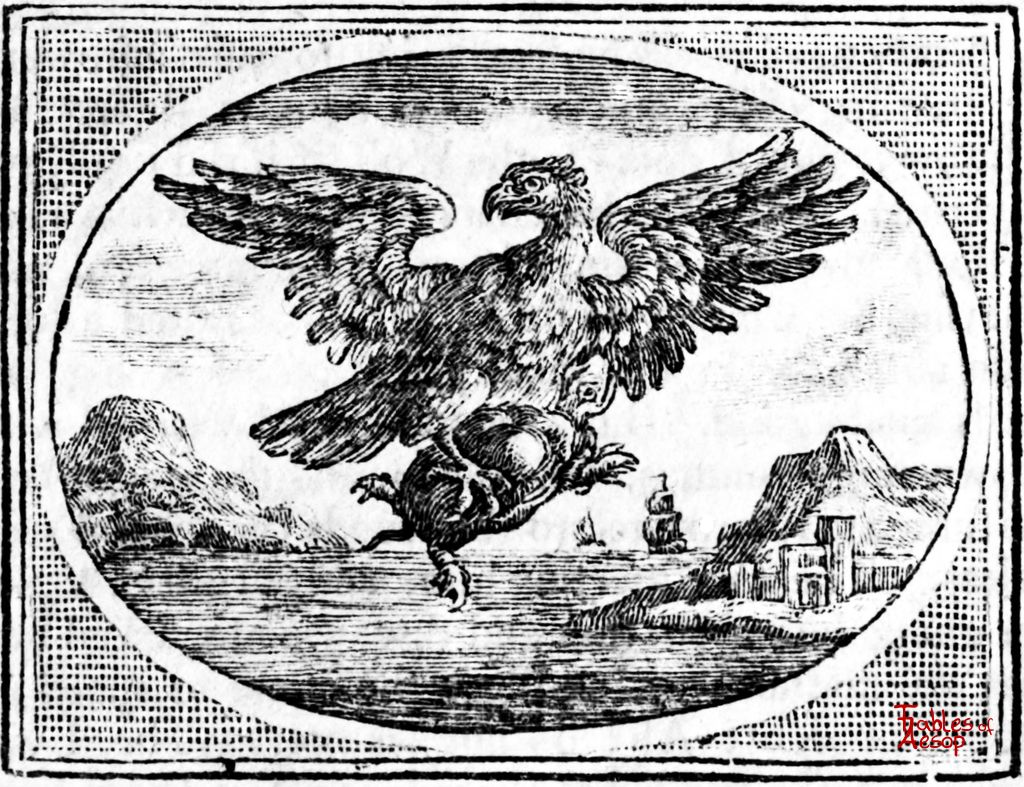 The Tortoise and The Eagle - Fables of Aesop