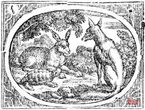 Croxall - Hare and Tortoise