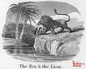 Taylor - Fox and Lion 0013