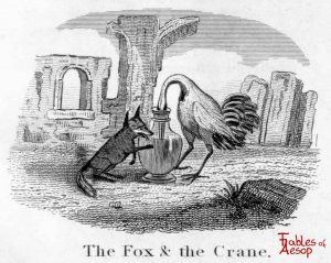 Taylor - Fox and Crane 0071