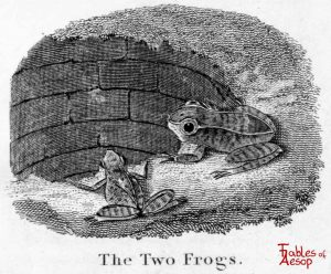 Taylor - Two Frogs 0071