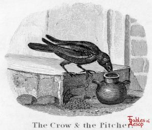 Taylor - Crow and Pitcher 0095