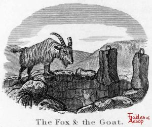 Taylor - Fox and Goat 0117