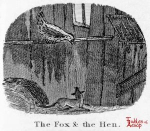 Taylor - Fox and Hen 0121