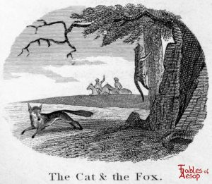 Taylor - Cat and Fox 0147