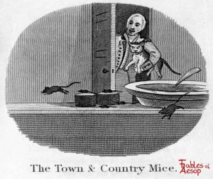 Taylor - Town and Country Mice 0147