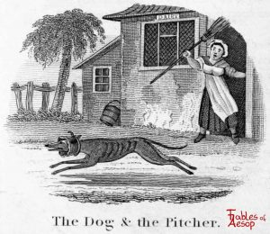 Taylor - Dog and Pitcher 0195