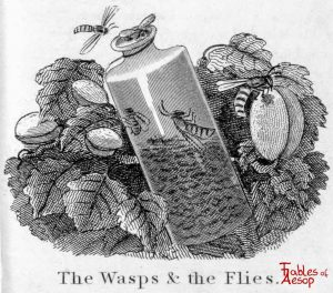 Taylor - Wasps and Flies 0201