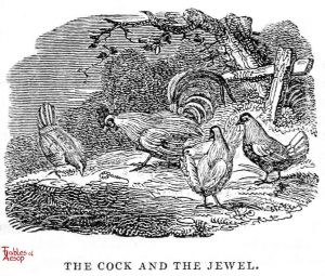 Whittingham - Cock and Jewel