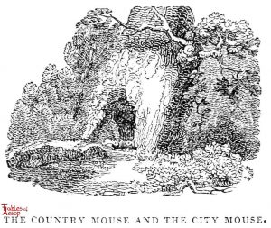 Whittingham - Country and City Mice