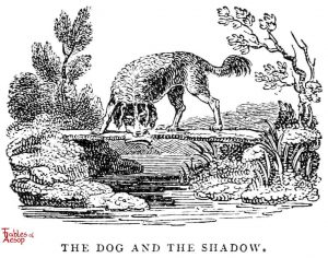 Whittingham - Dog and Shadow