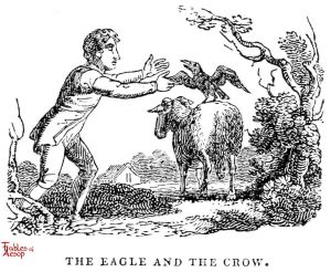 Whittingham - Eagle and Crow