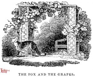 Whittingham - Fox and Grapes