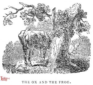 Whittingham - Ox and Frog